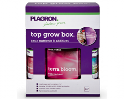 massive-grow;  Die Plagron Top Grow Box Terra is